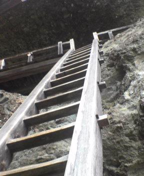 誰も昇らない梯