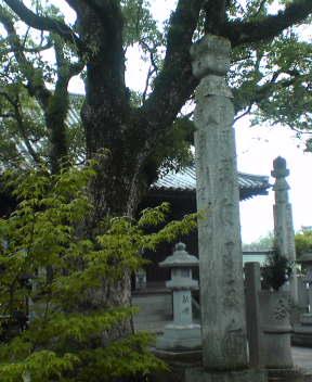 83番 一宮寺