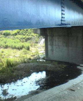 12年前に野宿した橋のした